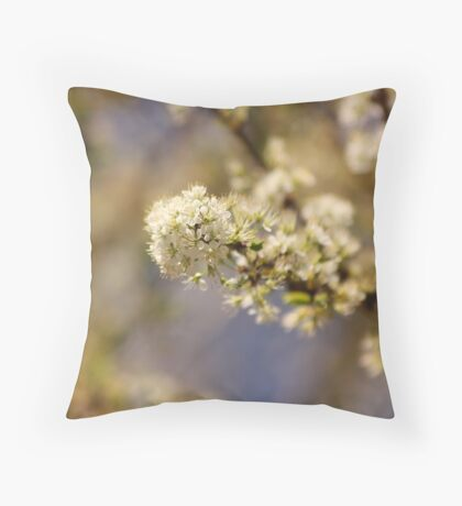 Lovely Spring Throw Pillow