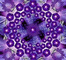 Morning Glory and the flying fish Mandala by Bill Brouard
