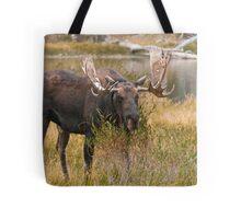 Bull Moose II Tote Bag