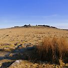 Dartmoor: Heading Towards Great Staple Tor by Rob Parsons