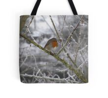 Robin and Winter Scene Tote Bag