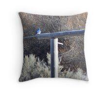 Mountain Bluebird on the Gate Post Throw Pillow