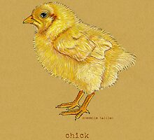 Chick or Chicken Bird by Revelle Taillon