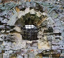 Camber Castle - decay by Dave Godden