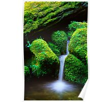 Mossy Cascade Poster