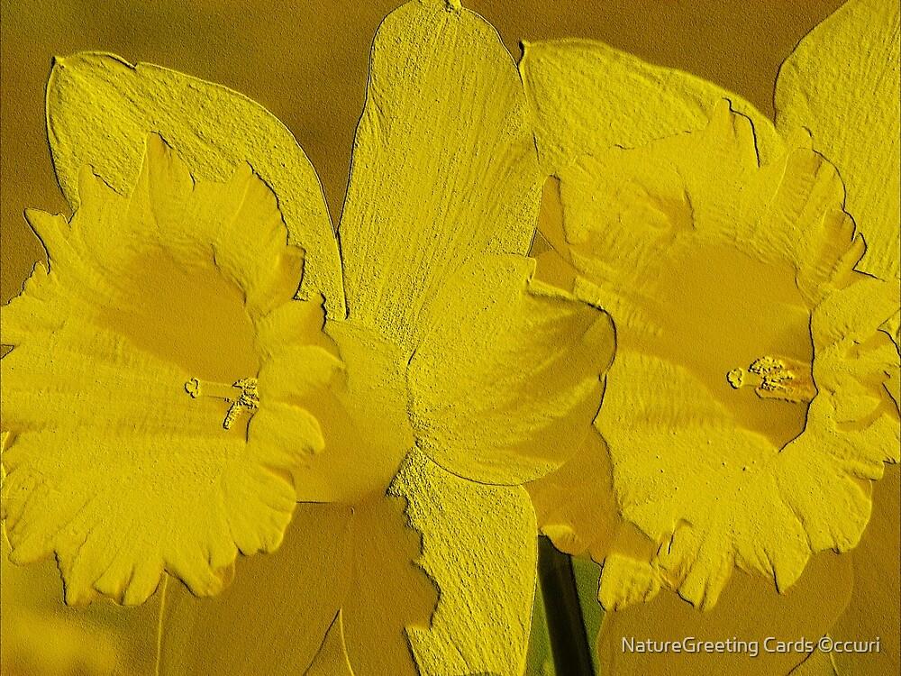 Warm by NatureGreeting Cards ©ccwri