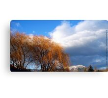 Last Day of Winter Canvas Print