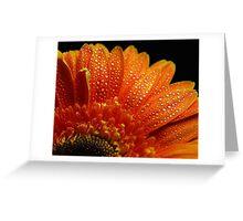 Orange Pearls Greeting Card
