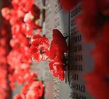Canberra: Roll Of Honour, National War Memorial 001 by Kezzarama