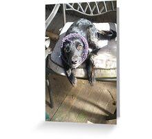 Peasant Pup Greeting Card