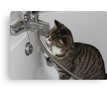 turn on the tap i'm thirsty Canvas Print
