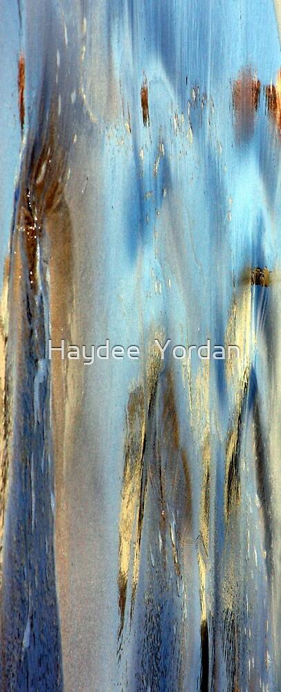Nature's art by Haydee  Yordan