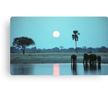 Sunset Drink Canvas Print