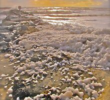 Sea Foam by shastinf