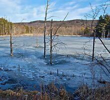 Season Change in the Berkshires by LeanneDixon