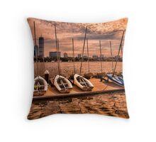 Charles River, Boston MA, USA Throw Pillow