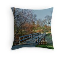 Cross Over The Bridge Throw Pillow