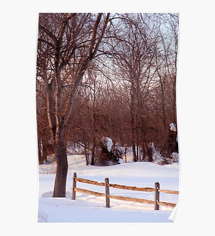 Quiet Snowy Day in the Country Poster
