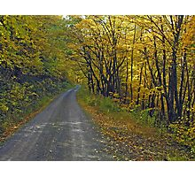 Follow The Yellow Hick Road Photographic Print