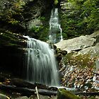 Waterfall in the Catskills by Kissy
