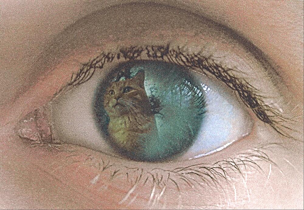 Cats eye by Ann Marie Hoff