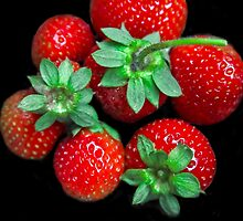 A Few Berries For You! by Heather Friedman
