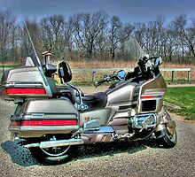 GoldWing by ECH52