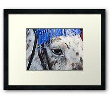 Gli Occhi Del Cavallo Italiano Framed Print