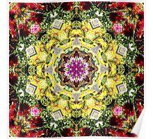 Dahlia's in Bloom Fractured Poster