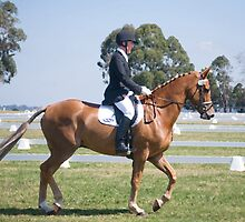 Dressage 2 by Greg Carrick