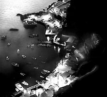 LEGEND by Scott  d'Almeida
