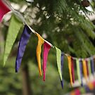 Colourful flags in the trees by JeniNagy