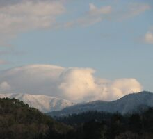 Oh What a View-Thunderhead Mountains in TN by JeffeeArt4u