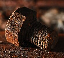 Old Rusty Bolt by Anton Gorlin