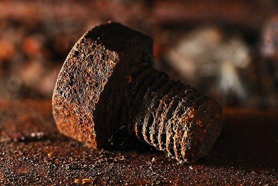 Old Rusty Bolt by Anton Gorlin