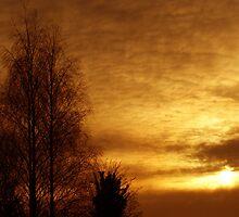 The Fiery Sun by Abhijeet Basu