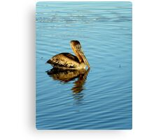Nature's Favorite ~ Part Two Canvas Print