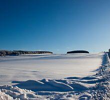 Snowy Aberdeenshire countryside by Copperhobnob