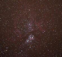 Eta Carina Nebula by Wayne England