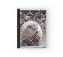 Charlotte - Who is visiting whom? Hardcover Journal