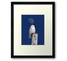 Moon Post Alignment / Snowy Owl Framed Print