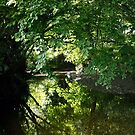 Ravensbourne Reflections by John Gaffen
