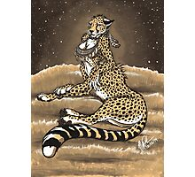 Cheetaurah Photographic Print
