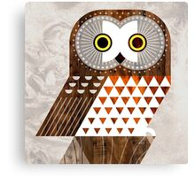 Saw Whet Owl Canvas Print