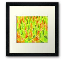 Citrus Geometric Pattern Framed Print