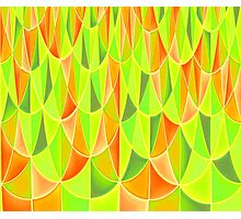 Citrus Geometric Pattern Photographic Print