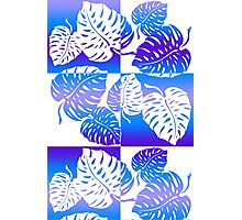 Makua Monstera Tropical Hawaiian Striped Blend  - Purple Photographic Print