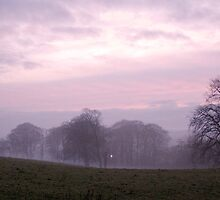 Misty sunset in Aden Park by Copperhobnob