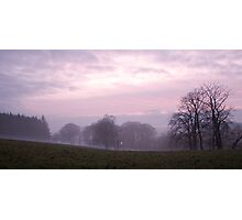 Misty sunset in Aden Park Photographic Print