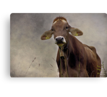 Do you like my Earrings? Canvas Print